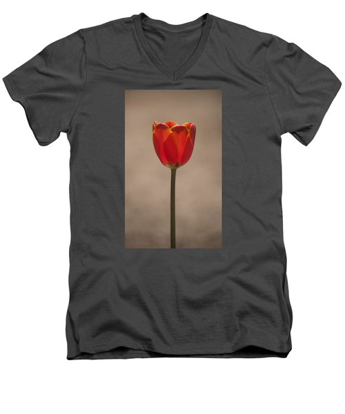 Tulip En Fuego Men's V-Neck T-Shirt