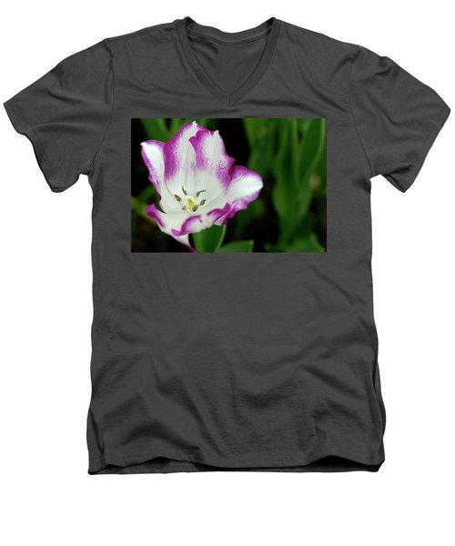 Tulip Flower Men's V-Neck T-Shirt