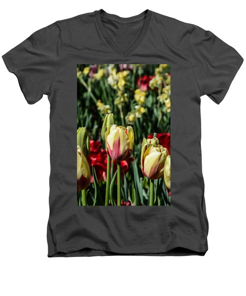 Tulip Garden Men's V-Neck T-Shirt