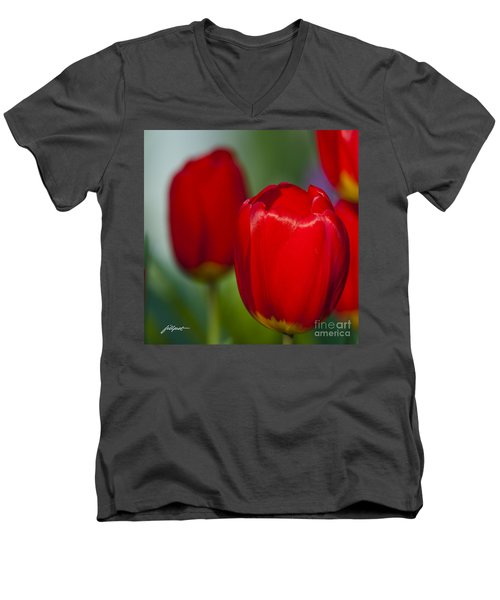 Tulip Perfection Men's V-Neck T-Shirt