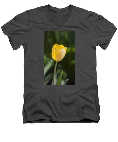 Tulip Portrait Men's V-Neck T-Shirt