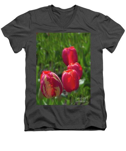 Tulip Quad Aglow Men's V-Neck T-Shirt by Ansel Price