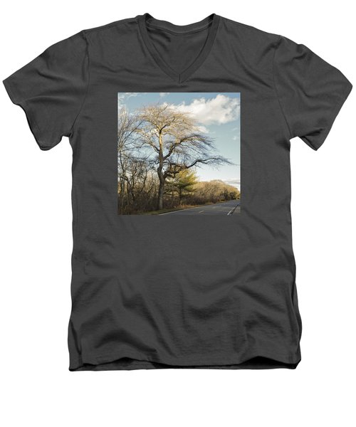 Tupelo Tree Men's V-Neck T-Shirt
