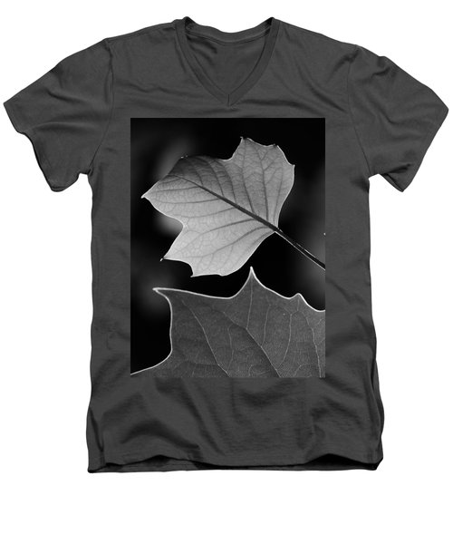 Tulip Tree Leaves Competing For Light Men's V-Neck T-Shirt by Jane Ford