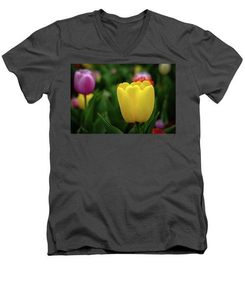 Tulips At Campus Men's V-Neck T-Shirt
