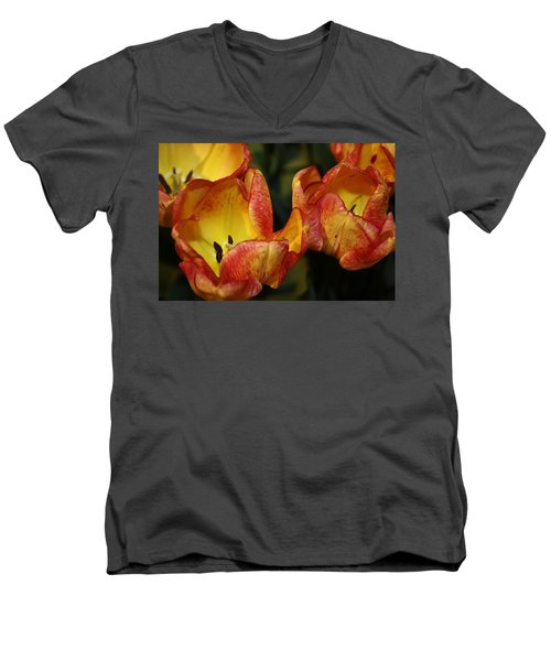 Tulips In The Morning Men's V-Neck T-Shirt by Bruce Bley