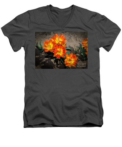 Tulips Soaking Up The Sun Men's V-Neck T-Shirt by John Roberts