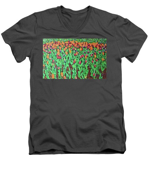 Tulips Tulips Everywhere Men's V-Neck T-Shirt