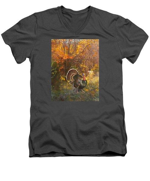 Turkey In The Woods Men's V-Neck T-Shirt