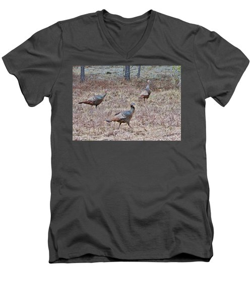 Men's V-Neck T-Shirt featuring the photograph Turkey Trio 1153 by Michael Peychich