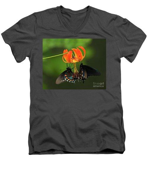 Turks Cap Lilly And Butterflies, Blue Ridge Parkway Men's V-Neck T-Shirt
