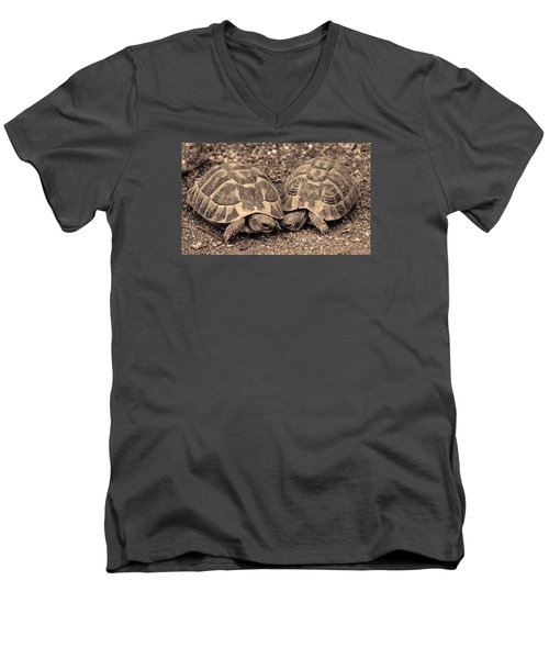 Turtles Pair Men's V-Neck T-Shirt by Gina Dsgn