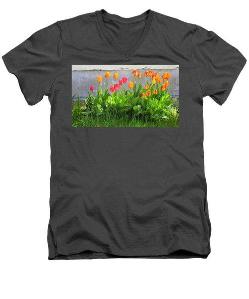 Twenty-five Tulips Men's V-Neck T-Shirt