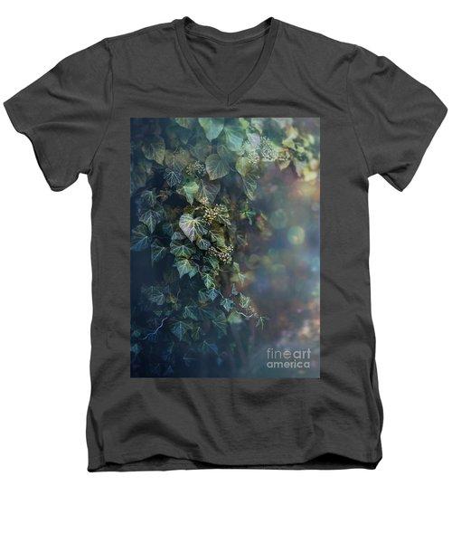 Twilight And Shadow Men's V-Neck T-Shirt