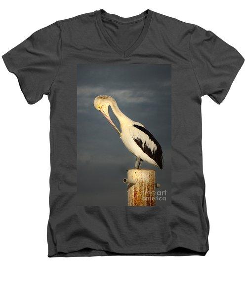 Twilight Men's V-Neck T-Shirt by Marion Cullen