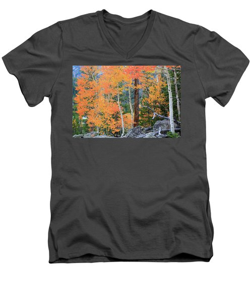 Men's V-Neck T-Shirt featuring the photograph Twisted Pine by David Chandler