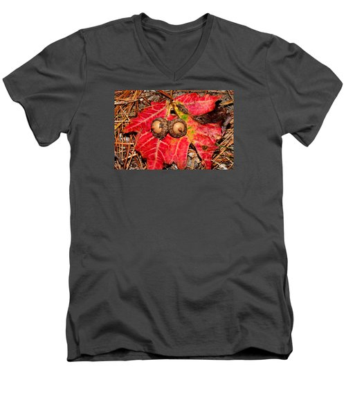 Two Acorns On Tatterd Maple Leaf Men's V-Neck T-Shirt