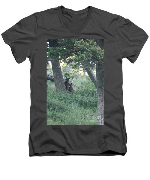 Two Bear Cubs Men's V-Neck T-Shirt
