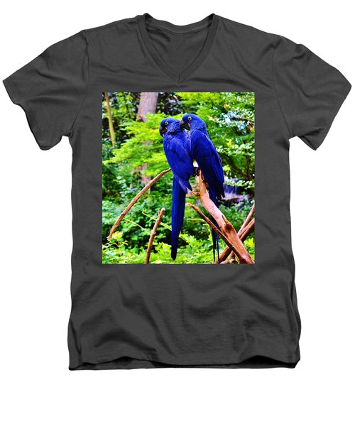 Two Birds Of A Feather Men's V-Neck T-Shirt
