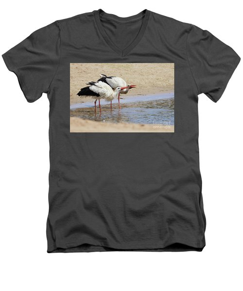 Two Drinking White Storks Men's V-Neck T-Shirt