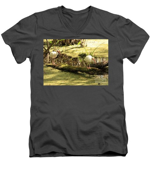 Two Ibises On A Log Men's V-Neck T-Shirt by Carol Groenen
