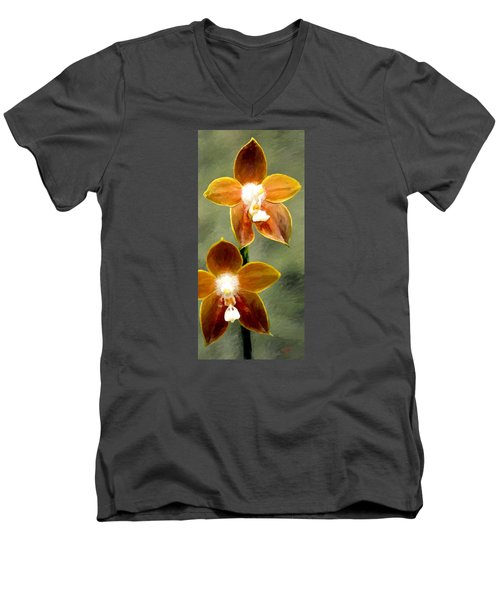 Two Of Us Men's V-Neck T-Shirt by James Shepherd