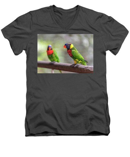 Two Parrots Men's V-Neck T-Shirt