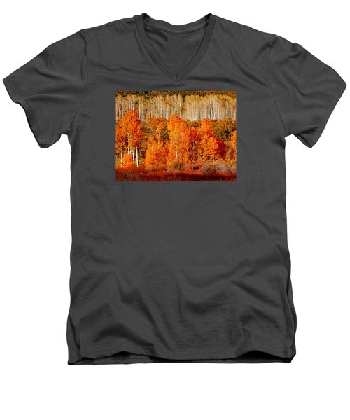 Two Rows Of Aspen Men's V-Neck T-Shirt by Marcia Socolik