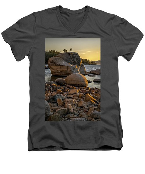 Two Small Trees Men's V-Neck T-Shirt