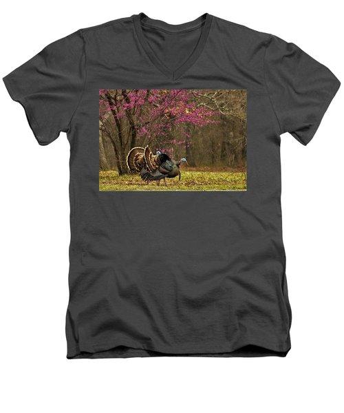 Two Tom Turkey And Redbud Tree Men's V-Neck T-Shirt