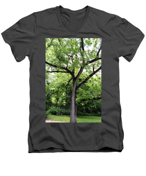 Two Tone Tree Men's V-Neck T-Shirt