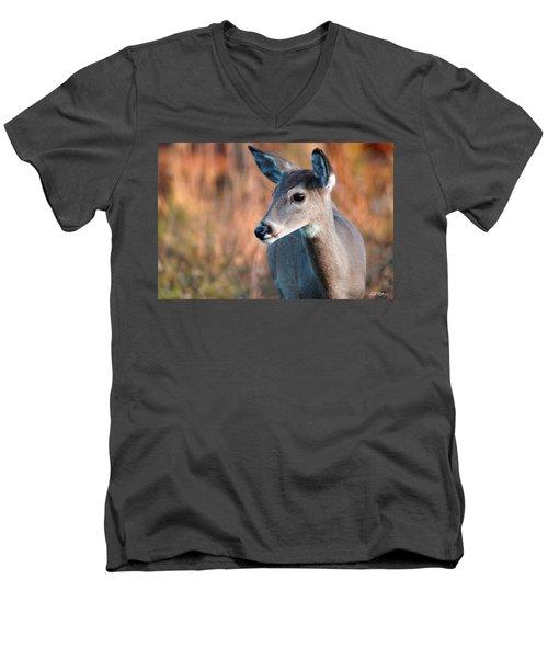 Tzavaot Men's V-Neck T-Shirt by Bill Stephens