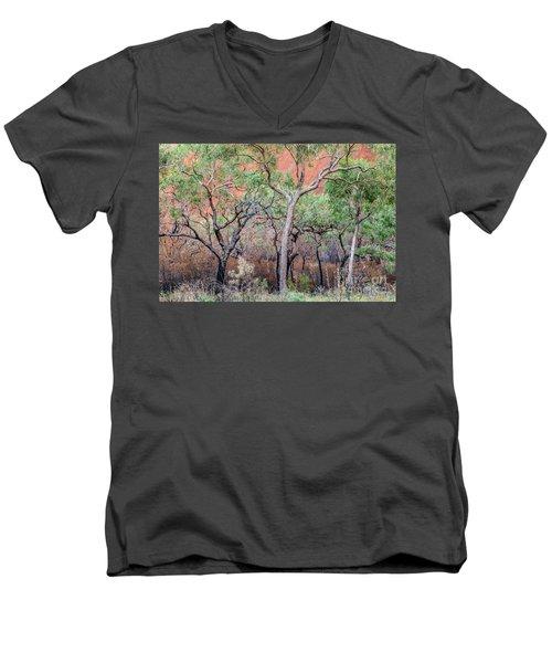 Uluru 05 Men's V-Neck T-Shirt