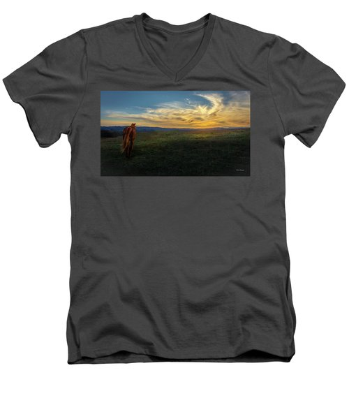 Under A Bright Evening Sky Men's V-Neck T-Shirt