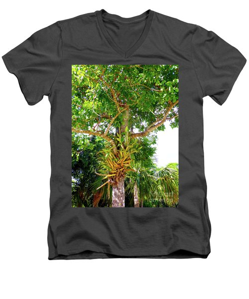 Men's V-Neck T-Shirt featuring the photograph Under A Tropical Tree M by Francesca Mackenney