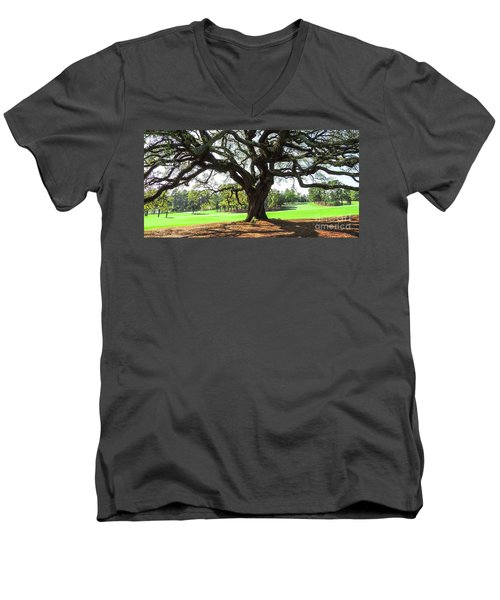 Under An Augusta Oak Men's V-Neck T-Shirt