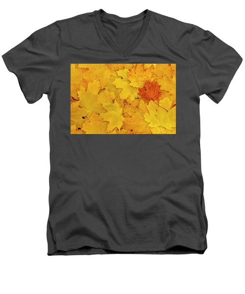 Men's V-Neck T-Shirt featuring the photograph Understory by Tony Beck