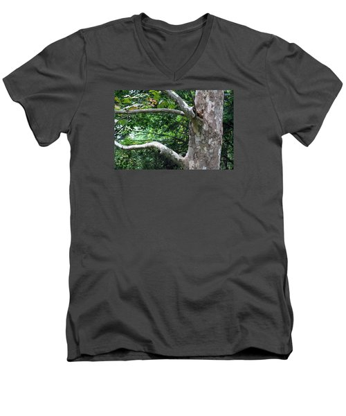 Men's V-Neck T-Shirt featuring the photograph Untiled by Dorin Adrian Berbier