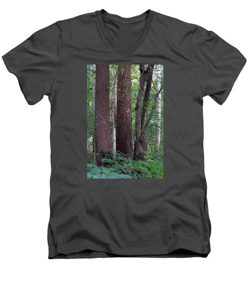 Men's V-Neck T-Shirt featuring the photograph Untitled by Dorin Adrian Berbier