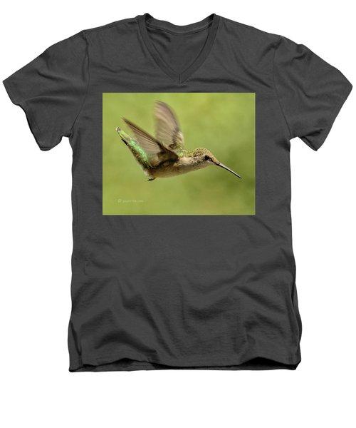 Untitled Hum_bird_one Men's V-Neck T-Shirt