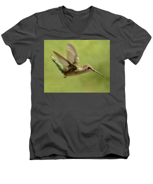Untitled Hum_bird_one Men's V-Neck T-Shirt