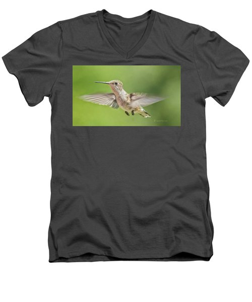 Untitled Hum_bird_three Men's V-Neck T-Shirt