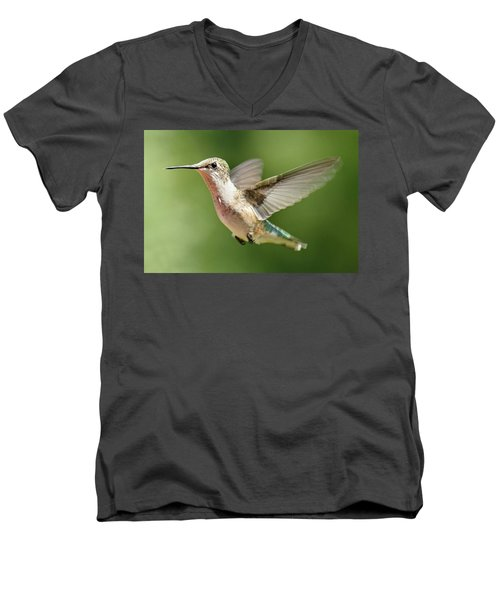 Untitled Hum_bird_two Men's V-Neck T-Shirt