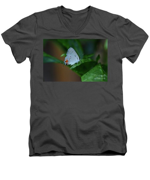 Unusual Butterfly Grey Hairstreak Strymon Melinus Men's V-Neck T-Shirt