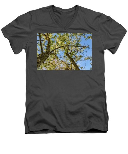 Up A Tree Men's V-Neck T-Shirt