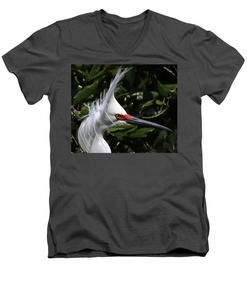 Up From A Nap Men's V-Neck T-Shirt by Lamarre Labadie