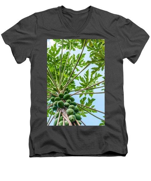 Up The Papaya Men's V-Neck T-Shirt