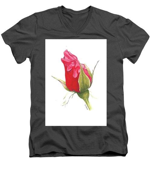 Valentines Men's V-Neck T-Shirt