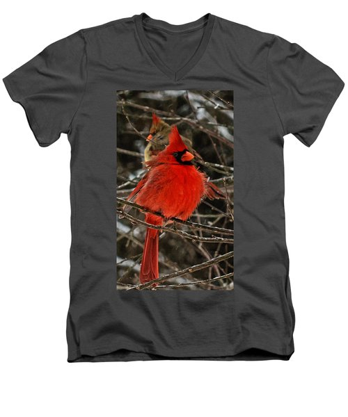 Valentines Men's V-Neck T-Shirt by John Harding