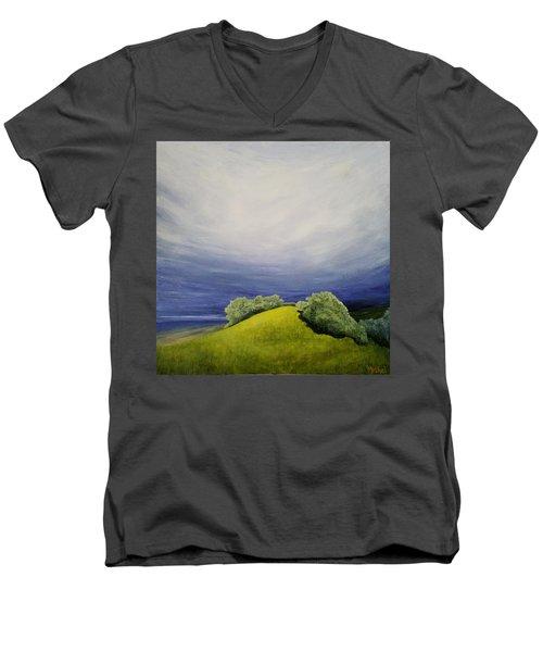 Valle Vista Meadow Men's V-Neck T-Shirt